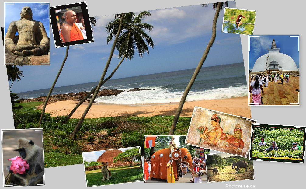 Gehst Srilanka Beautiful Naked Woman Haarige